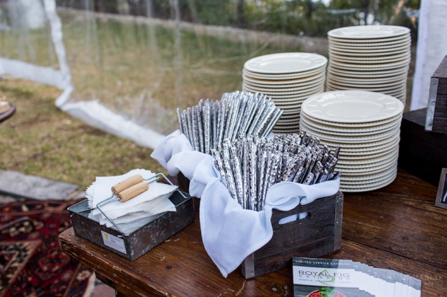 © Jenny DeMarco Photogrpahy 2014 - Royal Fig Fall Fete