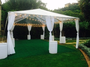 festoon lighting in clear tent 3