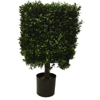 Topiary-Sculpted-e1523726785205